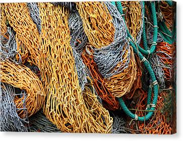 Nutin' But Net Canvas Print by John Bushnell