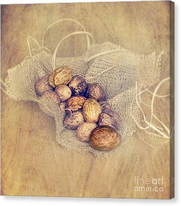 Floor Canvas Print - Nutritious Nuts by Svetlana Sewell