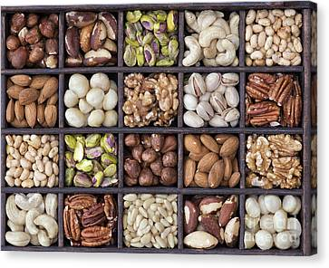 Nuts Canvas Print by Tim Gainey