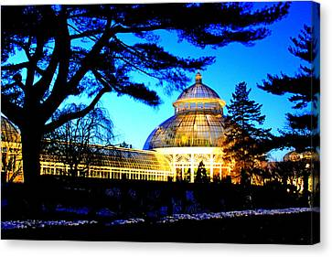 Canvas Print featuring the photograph Nybg Winter Scene by Aurelio Zucco