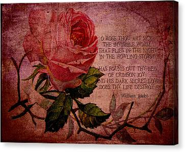 O Rose Thou Art Sick Canvas Print by Sarah Vernon