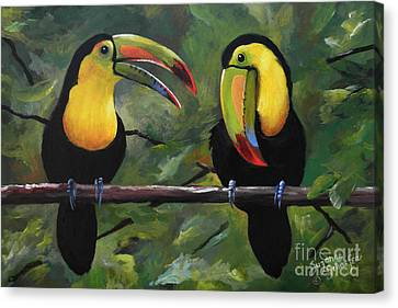 O Yeah Yeah Yeah -toucans Canvas Print by Suzanne Schaefer