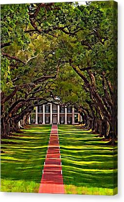 Oak Alley II Canvas Print by Steve Harrington