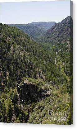 Oak Creek Canyon Overlook Canvas Print by David Gordon