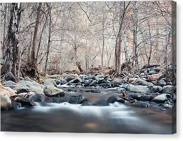 Oak Creek Canvas Print by Cody Payne