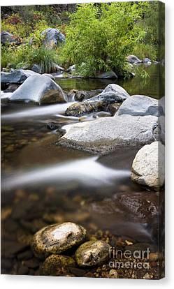 Oak Creek Flowing Canvas Print