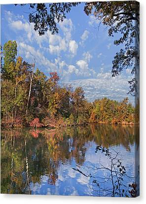 Fayetteville Canvas Print - Oak-hickory Forest In Autumn Foliage by Tim Fitzharris