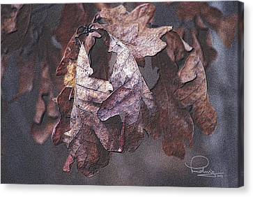 Canvas Print featuring the photograph Oak Leaves by Ludwig Keck