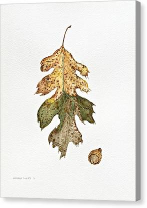 Canvas Print featuring the painting Oak Study by Michele Myers