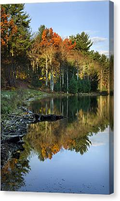 Canvas Print featuring the photograph Oakley Corners State Forest by Christina Rollo