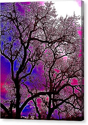 Canvas Print featuring the photograph Oaks 6 by Pamela Cooper