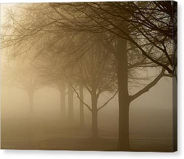 Canvas Print featuring the photograph Oaks In The Fog by Greg Simmons
