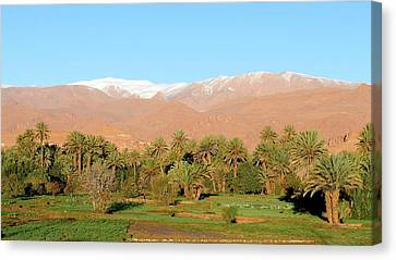 Moroccan Canvas Print - Oasis by Thierry Berrod, Mona Lisa Production