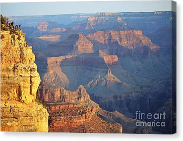 Observing Morning Hues Over Grand Canyon National Park 2 Canvas Print by Shawn O'Brien