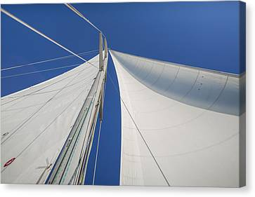 Obsession Sails 1 Canvas Print by Scott Campbell
