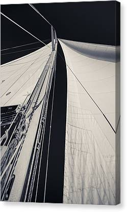 Obsession Sails 2 Black And White Canvas Print