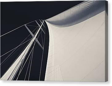 Obsession Sails 3 Black And White Canvas Print