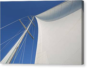 Obsession Sails 3 Canvas Print by Scott Campbell