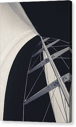 Obsession Sails 5 Black And White Canvas Print by Scott Campbell