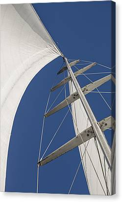 Obsession Sails 5 Canvas Print by Scott Campbell