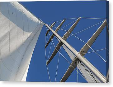 Obsession Sails 6 Canvas Print by Scott Campbell