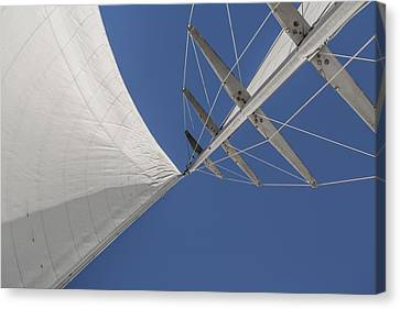 Obsession Sails 8 Canvas Print by Scott Campbell