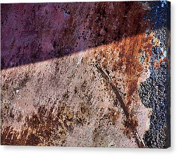 Obstruction Canvas Print by Tom Druin