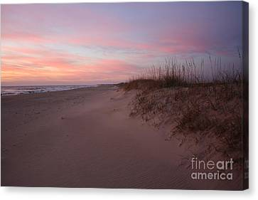Obx Serenity Canvas Print by Tony Cooper