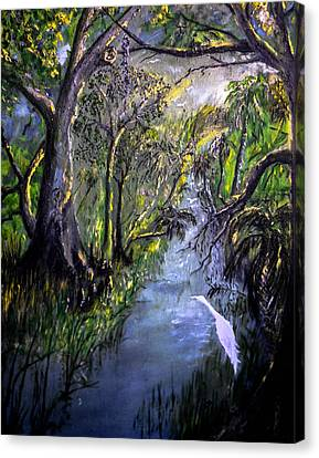 Ocala Creek Canvas Print