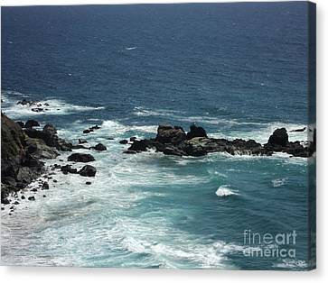 Canvas Print featuring the photograph Ocean Blue by Carla Carson