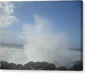 Ocean Boon Canvas Print