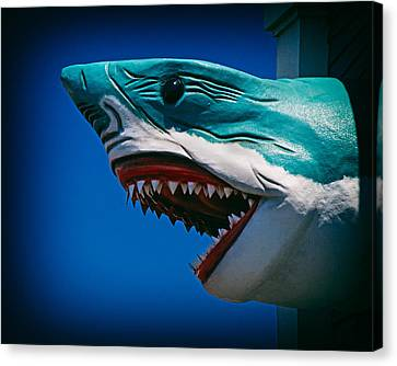 Ocean City Shark Attack Canvas Print by Bill Swartwout