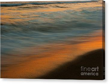 Wave Impressions  Canvas Print