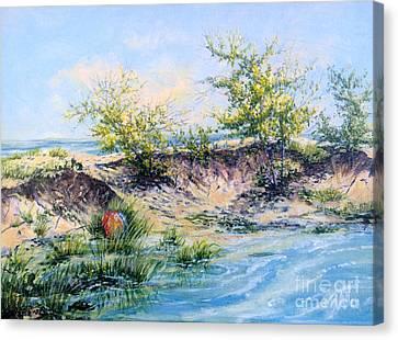 Ocean Inlet Canvas Print by Gail Allen
