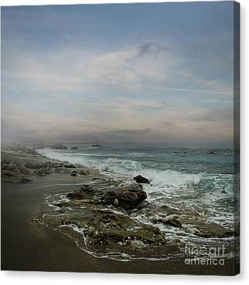 Ocean Canvas Print by Jelena Jovanovic