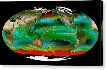 Ocean Phytoplankton Types Canvas Print by Mit Darwin Project/ecco2/mitgcm/nasa