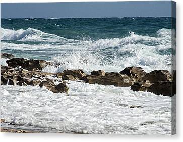 Ocean Surf Canvas Print by Darleen Stry