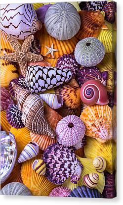 Ocean Treasures Canvas Print by Garry Gay