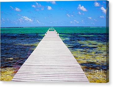 Ocean Walkway Canvas Print by Carey Chen