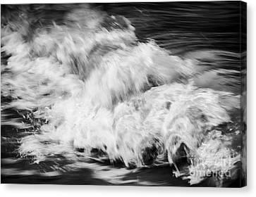 Ocean Wave I Canvas Print by Elena Elisseeva