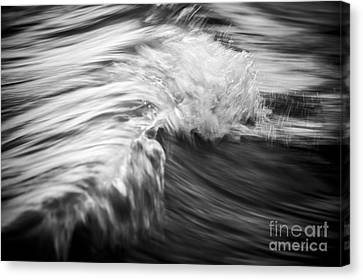 Ocean Wave IIi Canvas Print by Elena Elisseeva