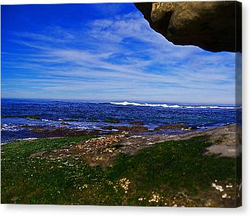 Ocean Welcome Canvas Print by Steve Battle