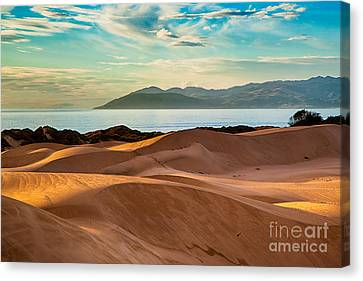Oceano Dunes In The Afternoon Canvas Print