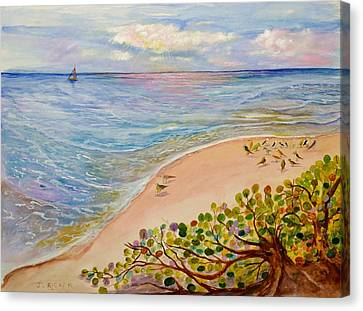 Seaside Grapes Canvas Print