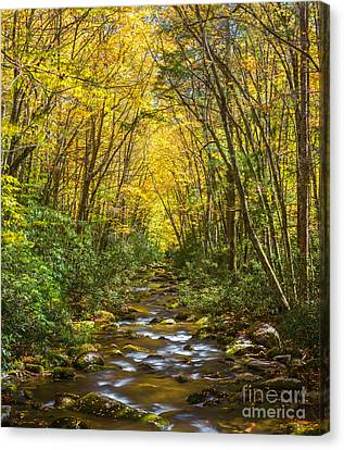 Canvas Print featuring the photograph Oconaluftee Splendor by Carl Amoth
