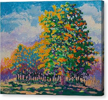 October 17th Canvas Print