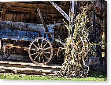 October Barn Canvas Print by Jan Amiss Photography