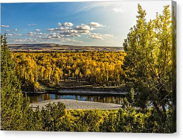 October In Heise Valley Canvas Print