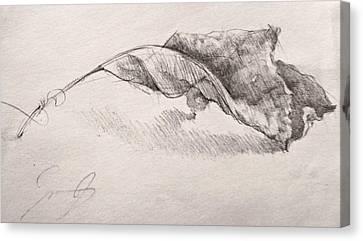 October Leaf Canvas Print
