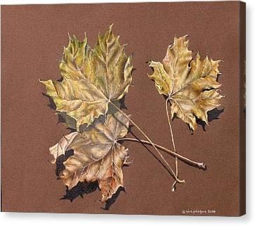 October Leaves Canvas Print by Gina Gahagan